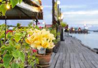 Bungid Seafood, Phuket Thailand
